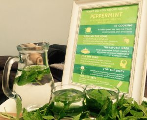Beehive Healthcare | Massage, Chinese Massage, Liposculpture, Facial Peeling, Dermapens and Healthcare Treatments Chester | Peppermint Herb of the Month