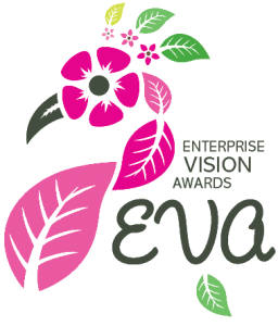 Beehive Healthcare   Massage, Chinese Massage, Liposculpture, Facial Peeling, Dermapens and Healthcare Treatments Chester   enterprise vision awards logo