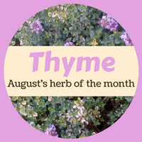 Beehive Healthcare | Massage, Chinese Massage, Liposculpture, Facial Peeling, Dermapens and Healthcare Treatments Chester | Aromatherapy Herb of the Month Thyme