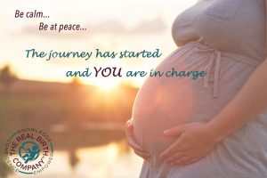 Beehive Healthcare Chester   Pregnancy and Post-Natal Care   The Real Birth Company  